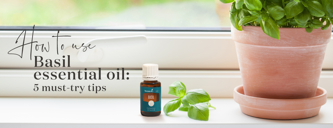 How to use Young Living Basil Essential oil
