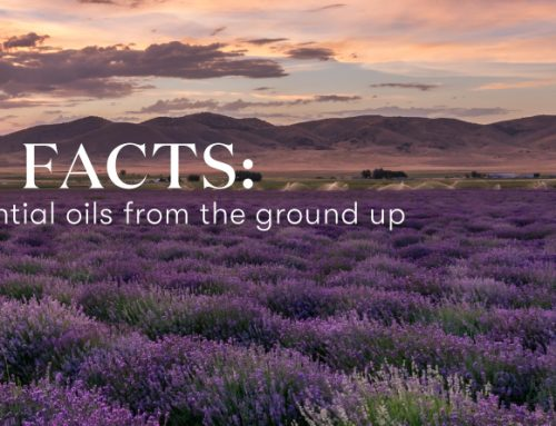Farm facts: Quality essential oils from the ground up