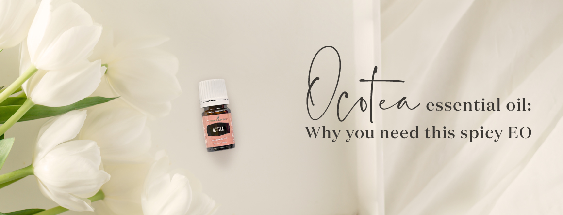 Ocotea essential oil: Why You need this spicy essential oil - Young Living essential oils blog