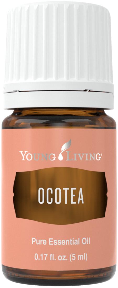 Ocotea essential oil - Young Living essential oils