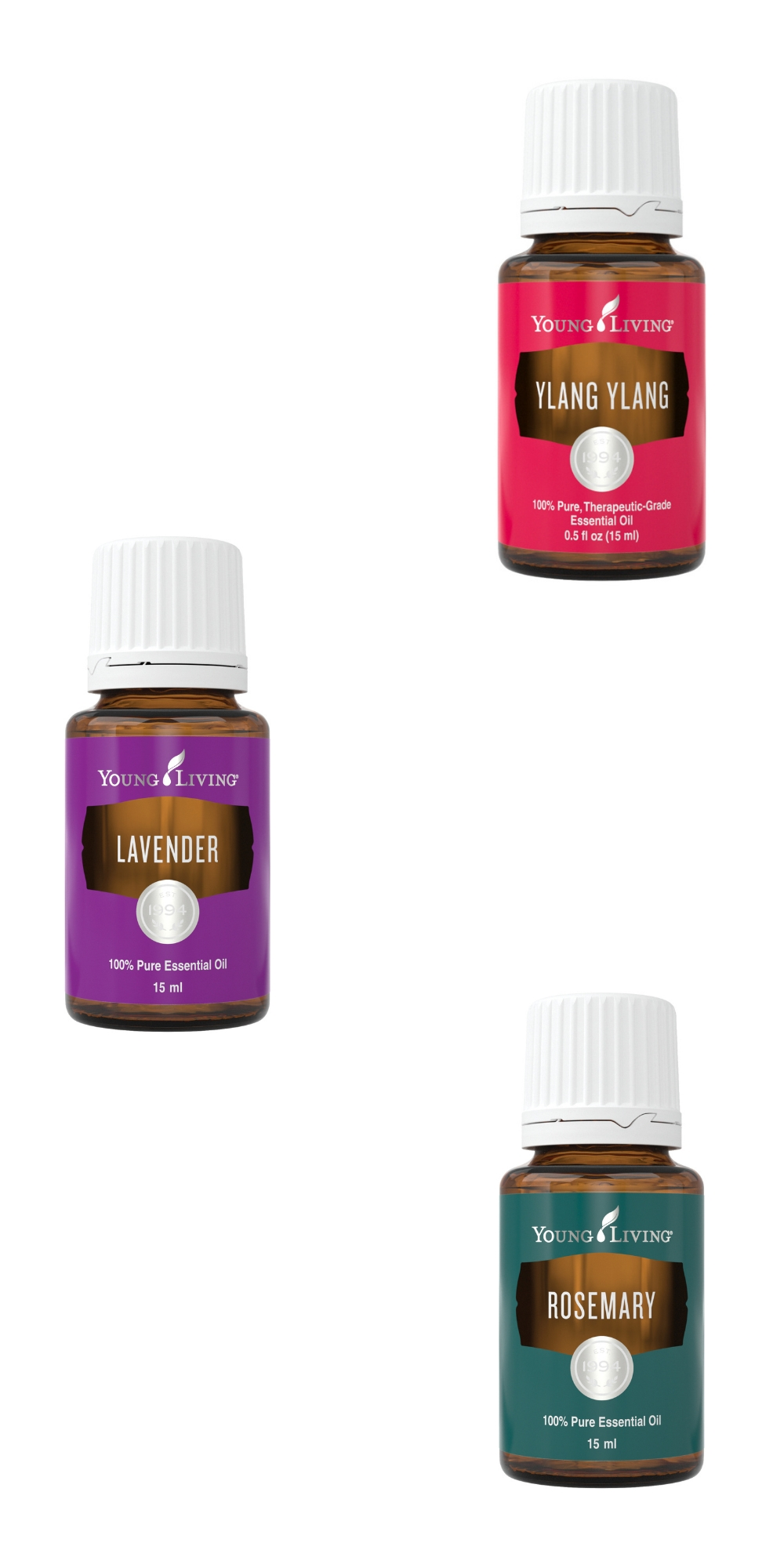 Ylang Ylang, Lavender, & Rosemary Essential Oils--Young Living Essential Oils
