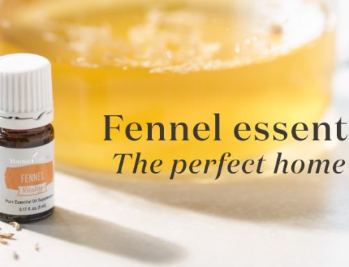 Fennel essential oil: The perfect home staple