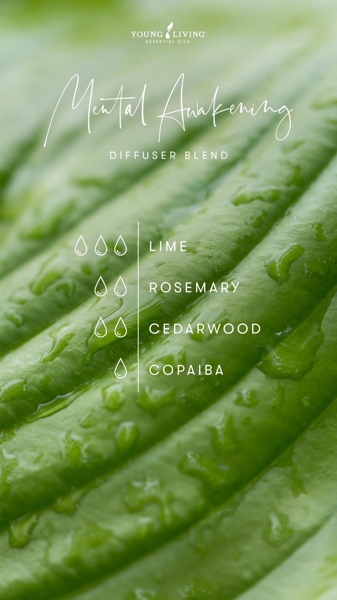 Mental Awakening Diffuser Blend - 3 drops Lime, 2 drops Rosemary, 2 drops Cedarwood, 1 drop Copaiba