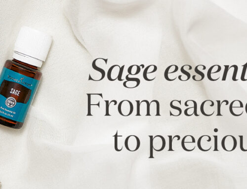 Sage essential oil: From sacred herb to precious oil