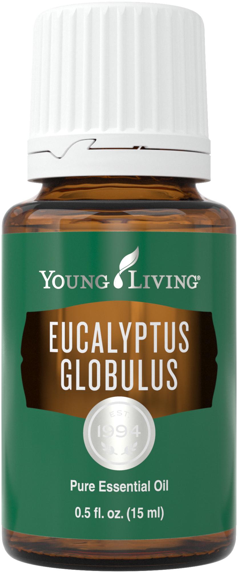 Eucalyptus Globulus Essential Oil - Young Living Essential Oils