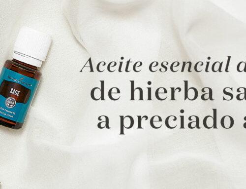 Aceite esencial de salvia: de hierba sagrada a preciado aceite