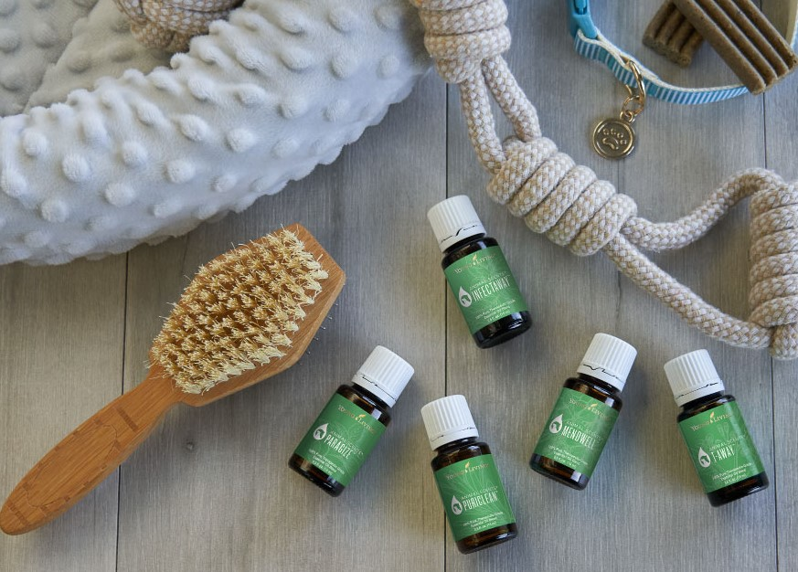 Animal Scents Essential Oils - Young Living Essential Oils