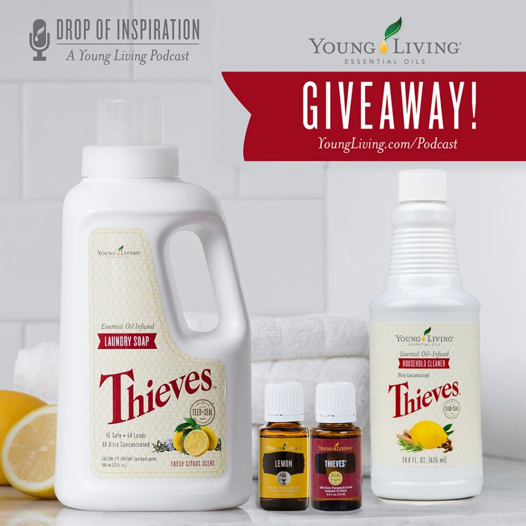 Thieves Cleaner and Your Healthy Home | Young Living Essential Oils ...
