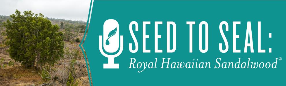 Seed to Seal: Royal Hawaiian Sandalwood | Young Living