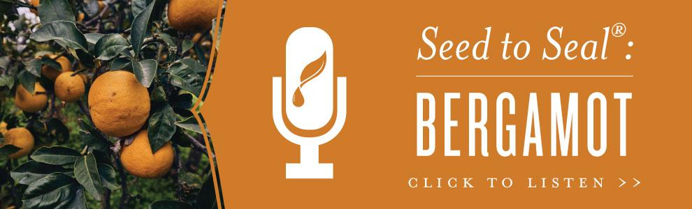Seed to Seal: Bergamot