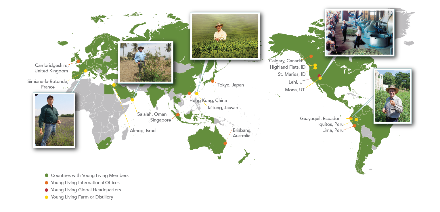Map Of Young Australia.Connecting A Global Community For 20 Years Young Living Essential Oils