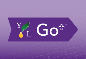 www youngliving com sign in