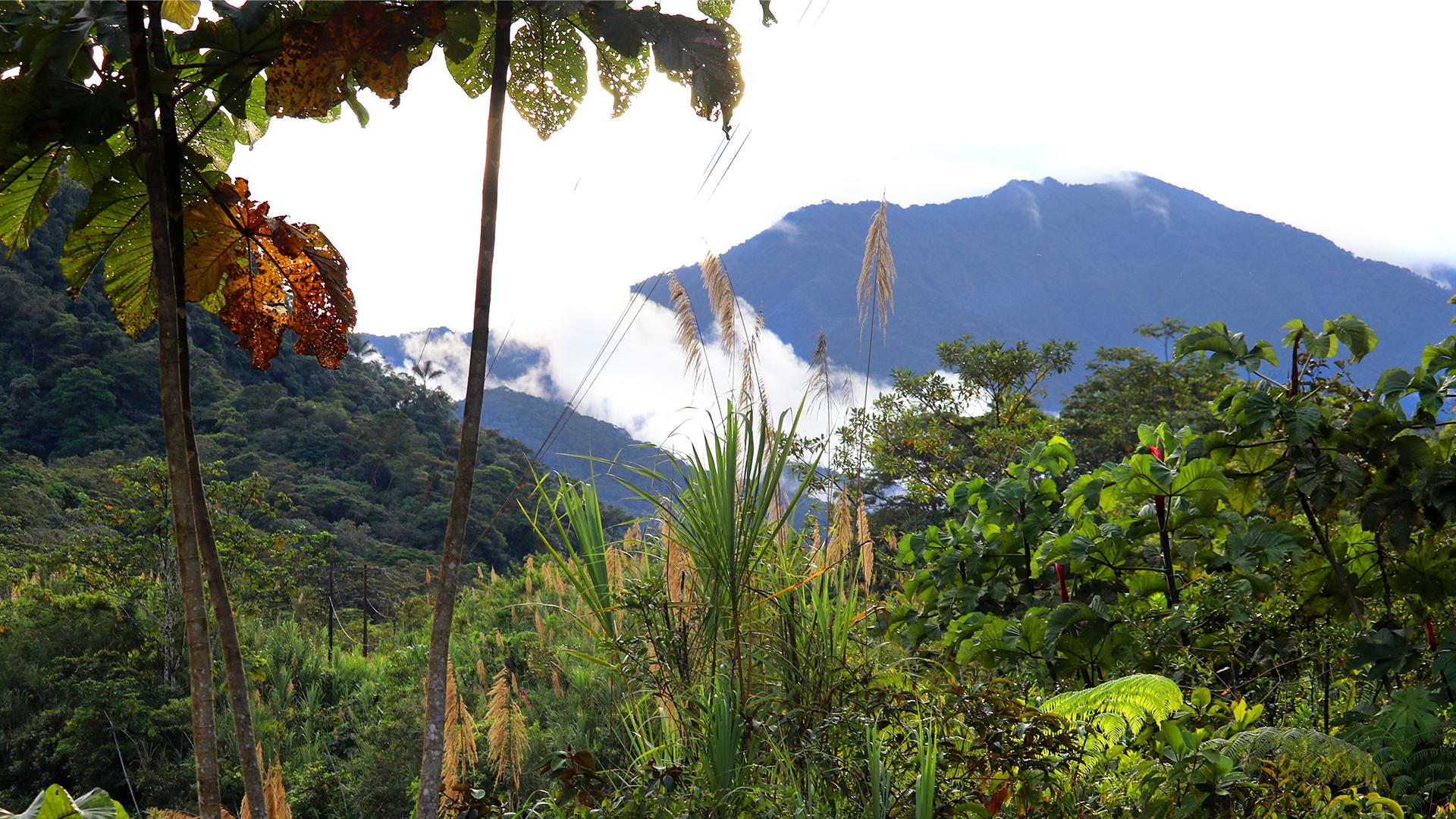 Pastaza Province, Ecuador